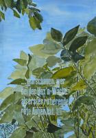 http://w-hielscher.de/files/gimgs/th-14_67_kirschbaum5_v2.jpg