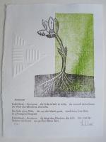 http://w-hielscher.de/files/gimgs/th-74_anemone.jpg