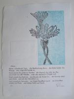 http://w-hielscher.de/files/gimgs/th-74_astern.jpg