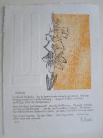 http://w-hielscher.de/files/gimgs/th-74_gladiolen.jpg